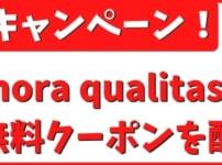 mora qualitasキャンペーン