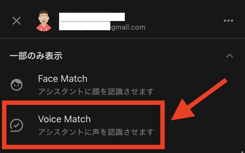 Voice Matchの設定方法